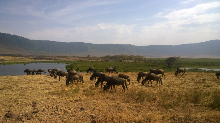Ngorongoro National Reserve (44).jpg