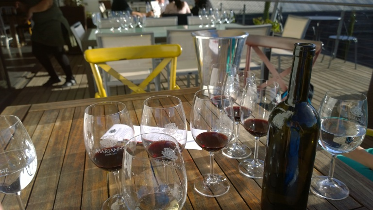 Marianne Wine Estate (5)