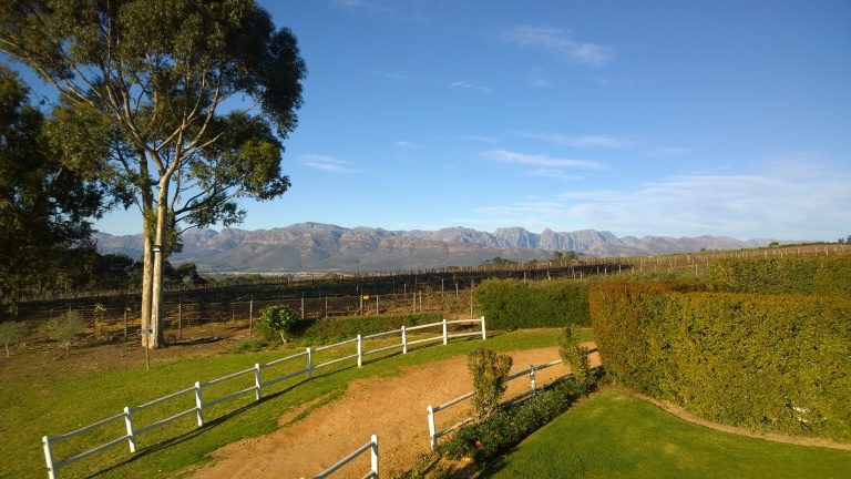 Marianne Wine Estate (7)